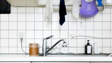 【生ゴミ用の小さなゴミ箱】うちのキッチンには、手持ちのアレがぴったりでした。